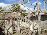 Los Toros 10-26-11 008 (7)housebuilding